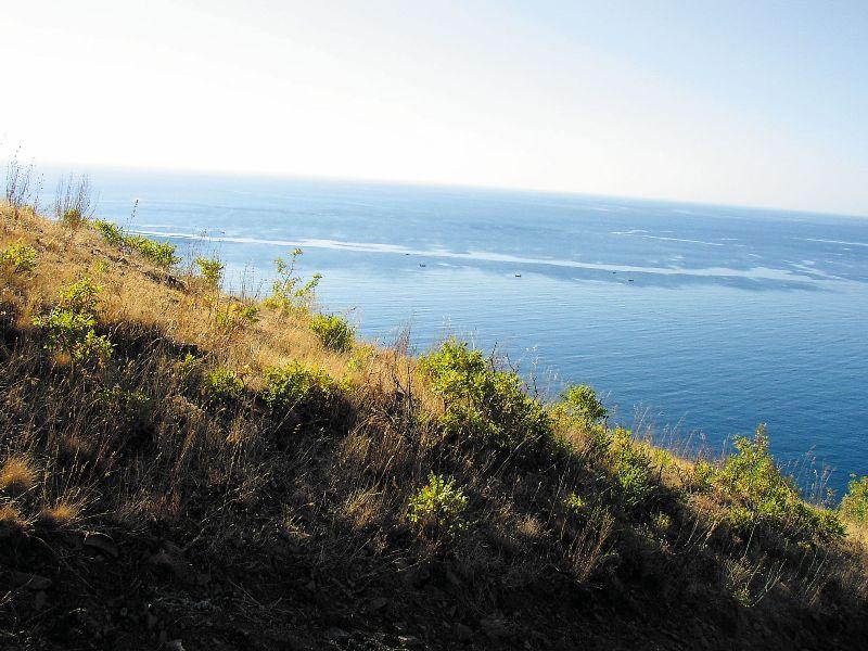 Плывешь, горизонт начинает сливаться с морем, и в голове рождается метафора: вот так и человек плывет по житейскому морю к своему спасению