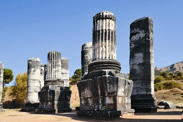 Здесь стоял храм Артемиды Эфесской – одно из семи чудес света, от которого сегодня сохранилось лишь несколько колонн