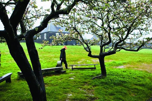 Форт Росс весна
