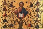 В Евангелии Христос говорит оCебе: «Я есмь истинная виноградная лоза, а Отец Мой – виноградарь» (Ин. 15;1)