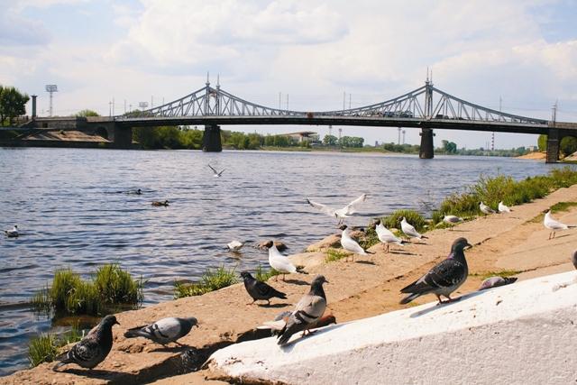 Уникальный мост в Твери – копия моста Свободы в Будапеште