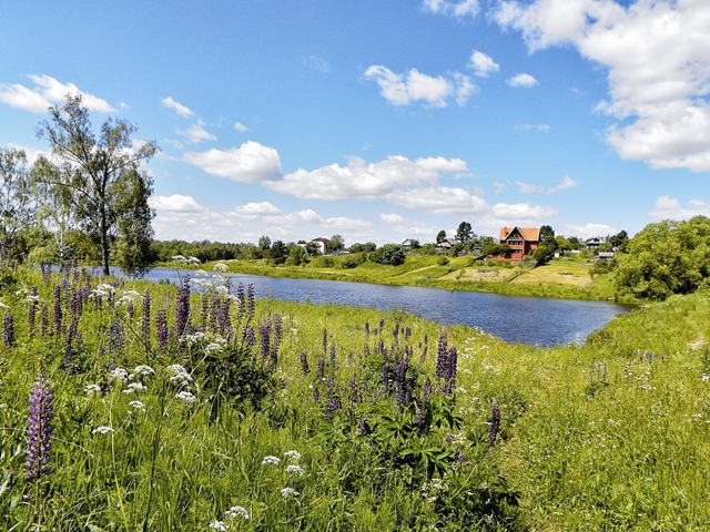 Село Рождествено-Суворово