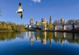 Территория Новодевичьего монастыря – самая большая среди московских обителей.  Она занимает 5 гектаров