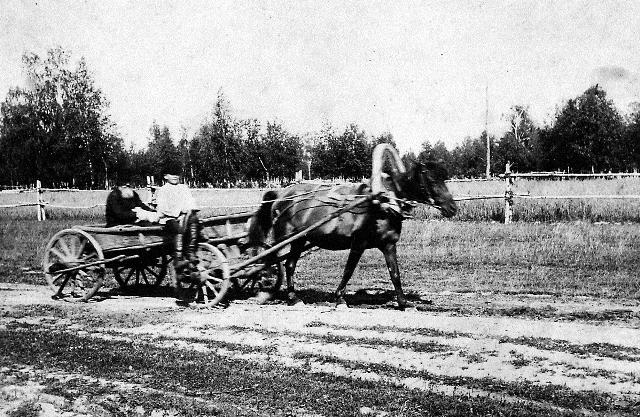 Священномученик Анатолий Правдолюбов на крестьянской телеге. 1924 год