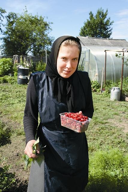 Первый урожай ягод