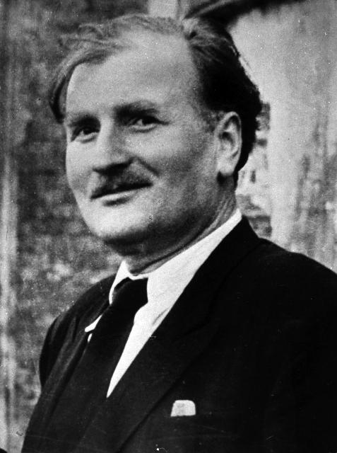 Давид Ильич Арсенишвили