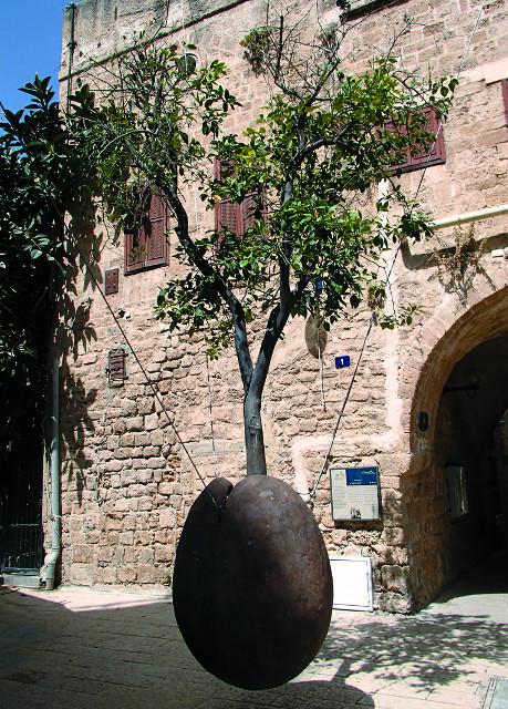Висящее дерево - самый известный арт-объект в городе