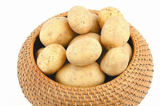 Из картофеля готовят сотни вкусных и полезных блюд, его широко используют в косметике и медицине.