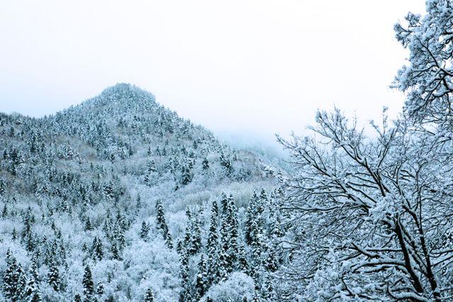 Обитель находится в горах на высоте 1147 м над уровнем моря, на территории природного парка «Рыльский монастырь». В заповеднике произрастает около 1400 видов растений, а воз- раст некоторых деревьев достигает 300 лет. На территории про- ложено несколько маркированных туристических маршрутов (все они начинаются от Рыльского монастыря) и экологическая тропа.